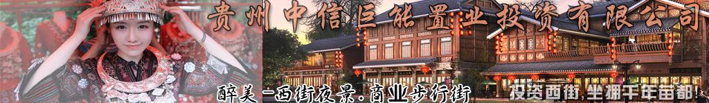 贵州中信巨能置业投资有限公司